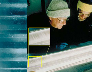 This is an image of scientists examining an ice core sample from Greenland