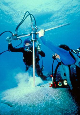 sampel inti terumbu karang